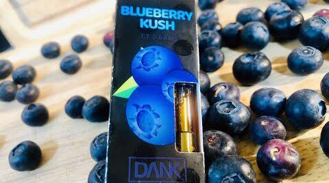 Blueberry Dank Vapes